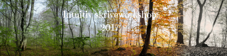 intuitiv-skriveworkshop2017