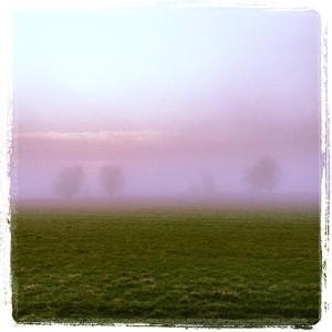 tågemark