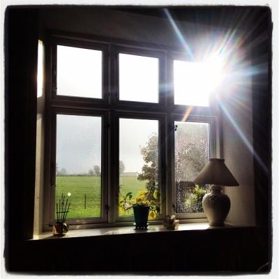 kærlighed gennem vinduet