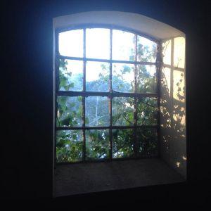 vindue og lys