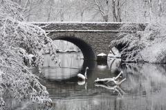winter-bridge