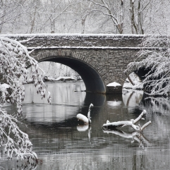 winter-bridge