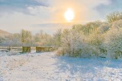 winter-meets-spring