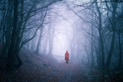 woman-in-the-woods
