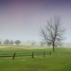 misty-landscape