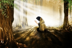 prayer_woods