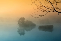 Misty Morning Lake