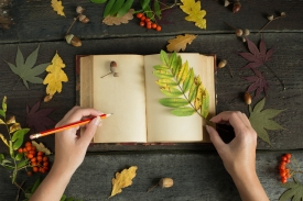 Autumn writings