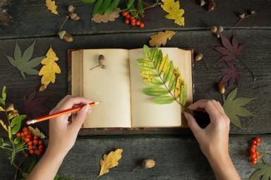 Autumn writings