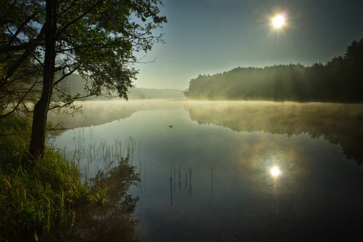 Sunrise Misty Lake