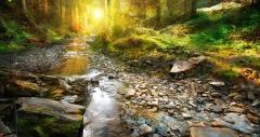 River light process