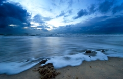Waves_Eric Gavaert