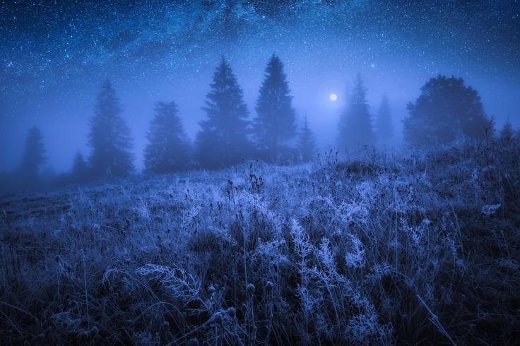 Blå vinternat