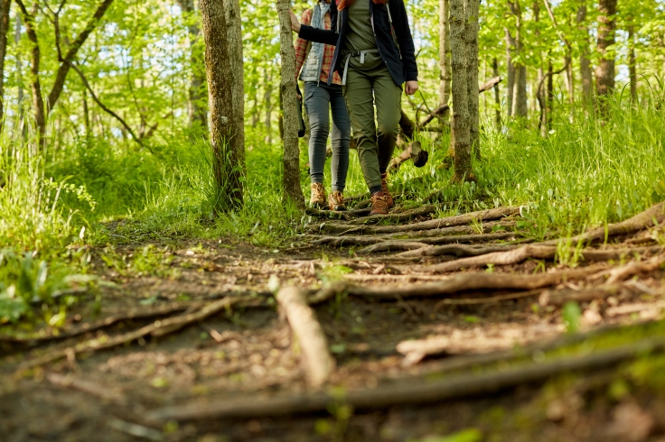 Two women hiking together through woodland