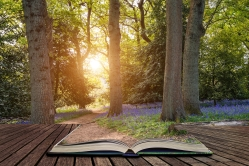 Beautiful landscape image of blubell woods in English countryside in Spring concept coming out of pages in open book
