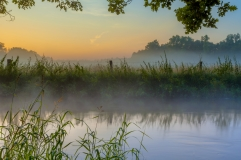 River Dinkel with lush vegetation on bank in Twente on an early summer morning with fog over the countryside of the Netherlands