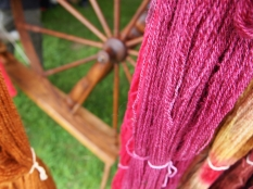 Closeup of just spun hanks of yarn on hanging near an old fashioned spinning wheel.