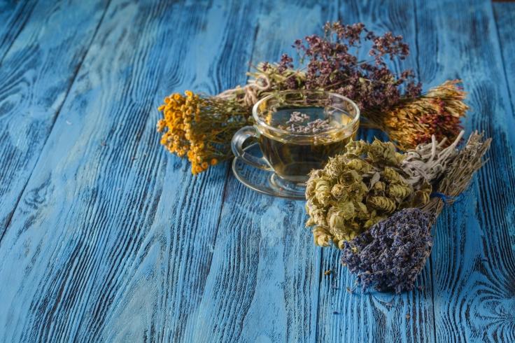 Herbal tea. Herbs and flowers, herbal medicine.
