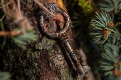 Old Key Tree