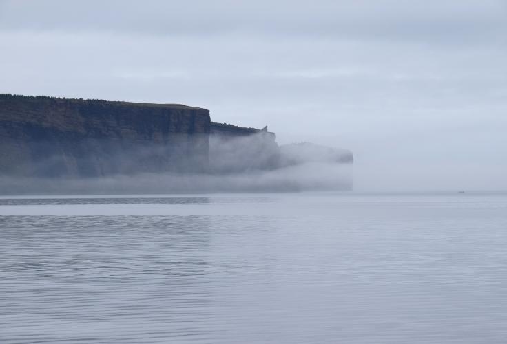 Klipper kyst tåge
